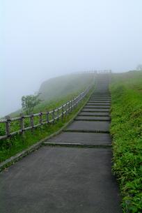 美幌峠の夏の素材 [FYI00116971]