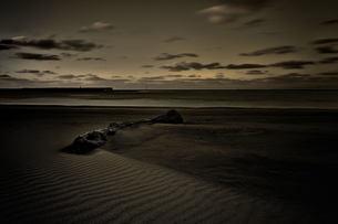 海 砂浜の写真素材 [FYI00117130]