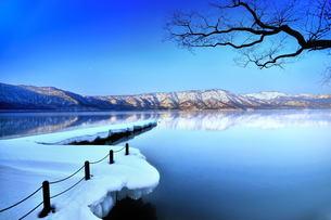 湖畔 朝 湖 十和田湖の写真素材 [FYI00117146]