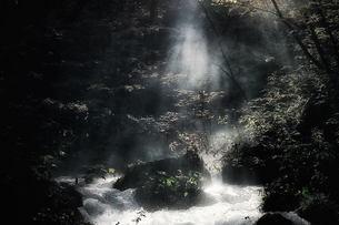 光芒の素材 [FYI00117160]