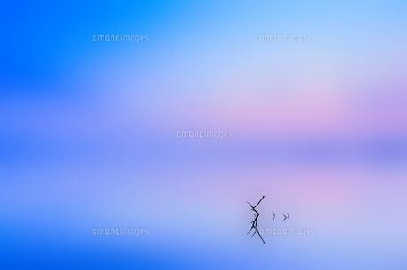 夕景の素材 [FYI00117162]