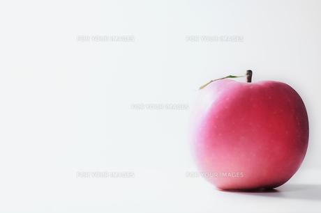 appleの素材 [FYI00117170]