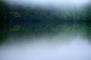 夏の朝の湖の素材 [FYI00117233]