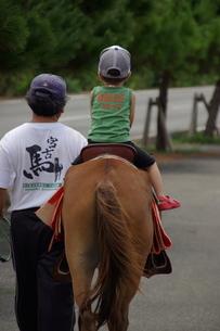 初めての乗馬の写真素材 [FYI00117397]