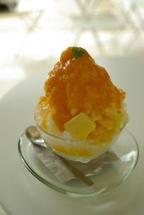 マンゴーかき氷の写真素材 [FYI00117434]