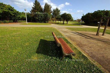 公園の椅子の写真素材 [FYI00117517]