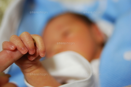 小さな手の写真素材 [FYI00117557]