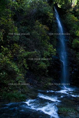 青白く流れる滝の素材 [FYI00117620]