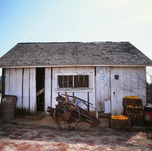 オレンジのある小屋の素材 [FYI00118006]