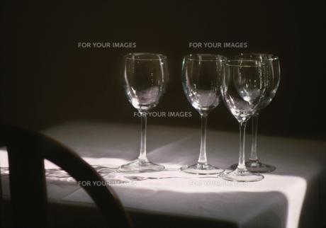 レストラン_ワイングラスの素材 [FYI00118032]