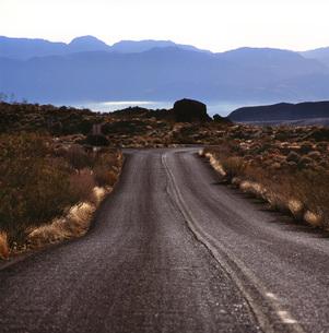 荒野の道の素材 [FYI00118034]