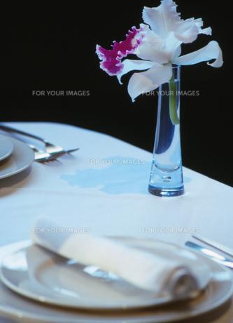 テーブルセッティングの素材 [FYI00118036]