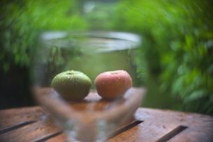 リンゴの素材 [FYI00118060]