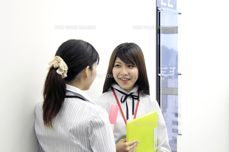 廊下で話す若い女性社員の素材 [FYI00118191]