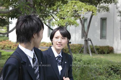 会話をしながら登校する男子高生と女子高生の素材 [FYI00119360]