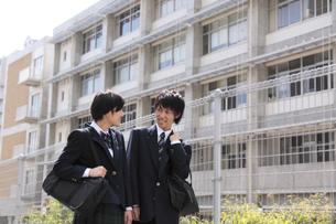 下校途中の男子高生と女子高生の写真素材 [FYI00119365]