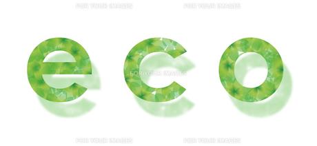 eco 木漏れ日の写真素材 [FYI00119787]