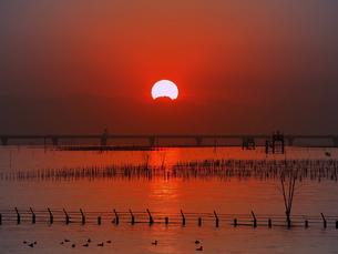 夕陽と橋の写真素材 [FYI00119868]