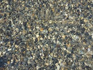 水面波紋の写真素材 [FYI00119931]