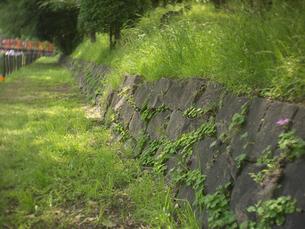 石壁とパスの写真素材 [FYI00119987]