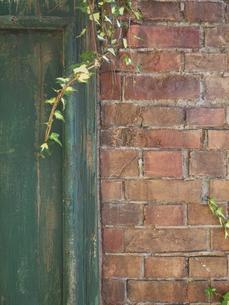 赤い壁と緑のドアの写真素材 [FYI00120000]
