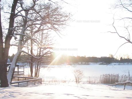 北極の朝日の写真素材 [FYI00120009]
