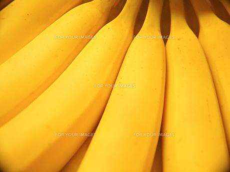 バナナの写真素材 [FYI00120040]