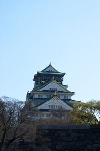 春の大阪城の写真素材 [FYI00120275]