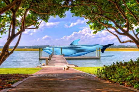 イルカの日の写真素材 [FYI00120433]