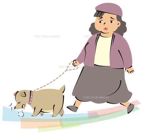 ペットと一緒に太った女性の写真素材 [FYI00120616]
