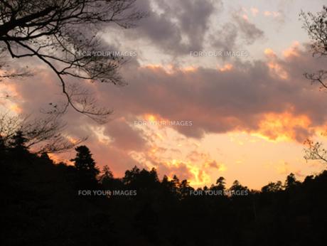高尾山の夕暮れの写真素材 [FYI00120667]