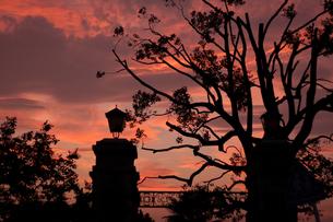 横浜の夕暮れの写真素材 [FYI00120685]