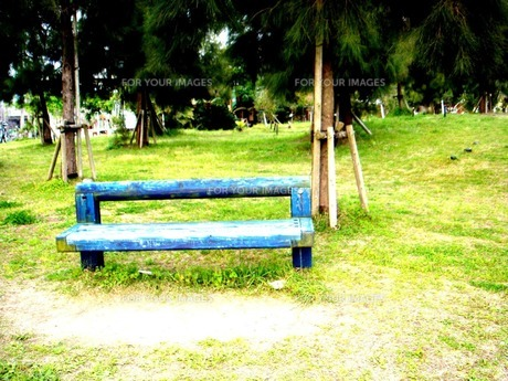 青いベンチの写真素材 [FYI00120789]