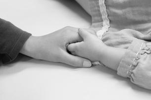 子供と大人の手の写真素材 [FYI00121061]