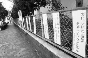 学校付近の看板の写真素材 [FYI00121065]