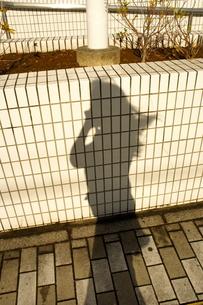 風で揺れる影の写真素材 [FYI00121091]