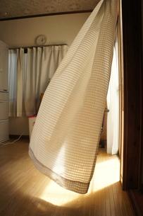 揺れるカーテンの写真素材 [FYI00121110]