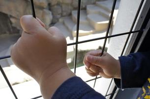 ギュッと握る子供の手の写真素材 [FYI00121121]
