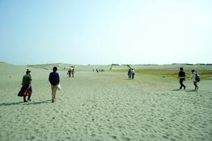 中田島砂丘の素材 [FYI00121124]