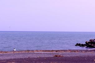 浜辺のカップルの写真素材 [FYI00121147]