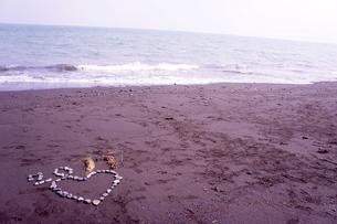 石でハート型と海の写真素材 [FYI00121150]
