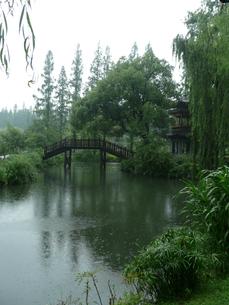 中国・杭州 西湖・曲院風荷の写真素材 [FYI00121185]