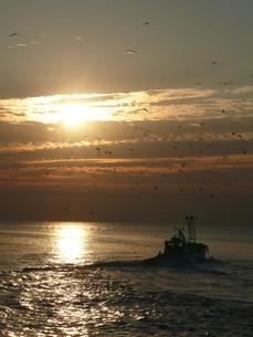 朝の海の写真素材 [FYI00121205]