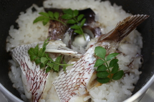 鯛飯の写真素材 [FYI00121364]