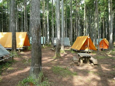 キャンプ場の写真素材 [FYI00121377]