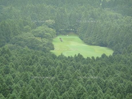朝霧のゴルフ場の写真素材 [FYI00121381]