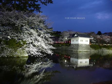小田原城・春の宵の素材 [FYI00121418]