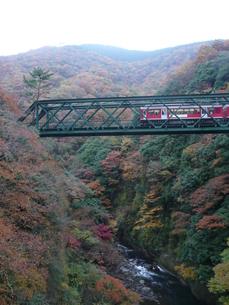 秋の箱根・出山鉄橋の写真素材 [FYI00121458]