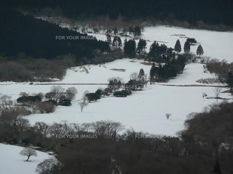 冬のゴルフ場の写真素材 [FYI00121463]