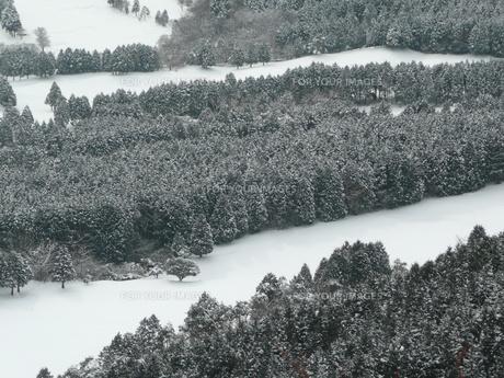 冬のゴルフ場の写真素材 [FYI00121471]